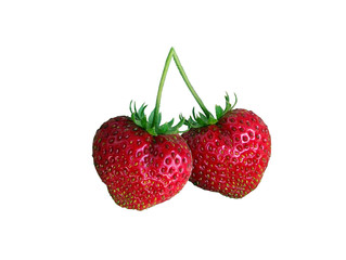 Strawberry Couplet