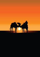 caravan of camels in Sahara at sunset