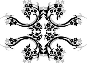 black on white BG