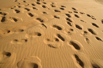 Foot-prints on the sand in Dubai desert, UAE.