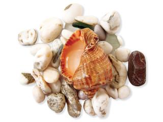 Bowls on a pebble