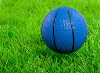 a blue basketball on a green lawn