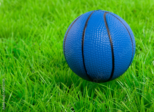 a blue basketball on a green lawn