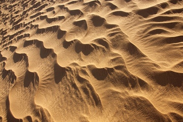 rippled desert sand pattern in daylight