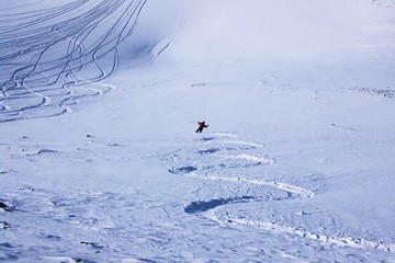 freestyle skier on a slope