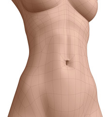 Polygonal belly button