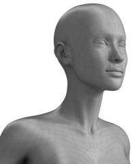 Polygonal bust of woman