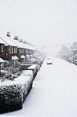 Snowing in street