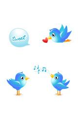 tweet birds