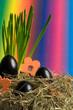 Leinwandbild Motiv buntes Nest zu Ostern