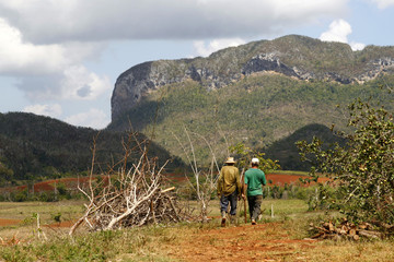 Two farmers walking in a Vinales countryside in Cuba