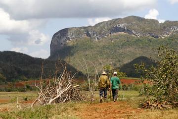 Two farmers walking in a Vinales countryside in Cuba