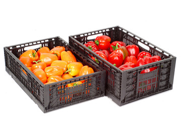 Boxes with peppers isolated on white