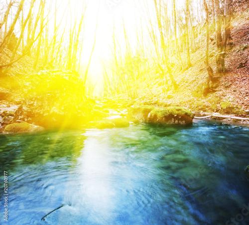 Leinwanddruck Bild Creek in forest