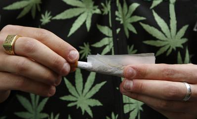 porro cannabis