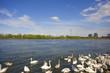 Donauinsel Wien