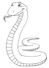 Schlange, Mamba, Dschungel, gefährlich, giftig, Gift
