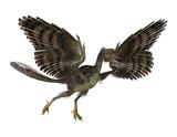 Prehistoric Bird poster