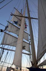 Sailing on a Clipper ship