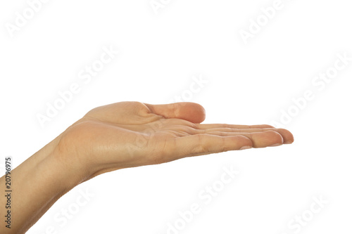 Handfläche