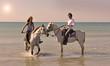 cavaliers en mer au couchant