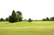 Beautiful Golf green grass sport fields