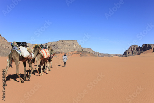 Tuinposter Algerije Libye, randonnée chamelière dans l'Akakus