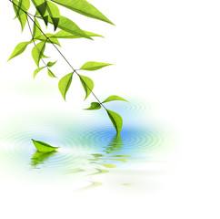 Nature et Meditation