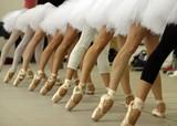 Fototapety bailarinas