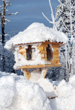 Birdhouse in Winter Snow