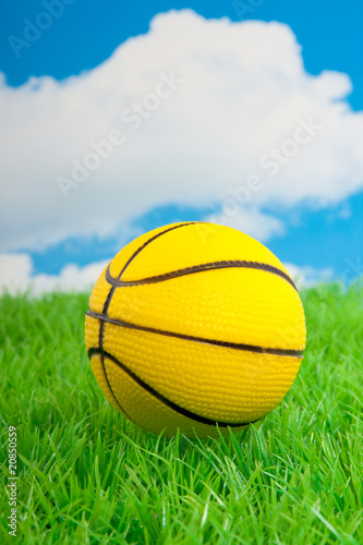 a yellow basketball on a green lawn against a blue cloudy sky