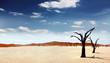 Leinwandbild Motiv Einsame Wüste
