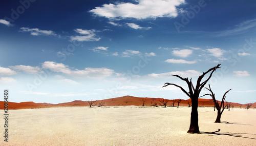 Einsame Wüste - 20864508