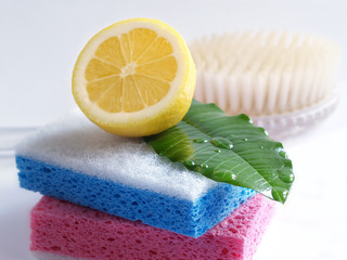 sponge hygiene, isolated