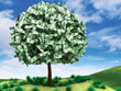 Money Tree with Landscape