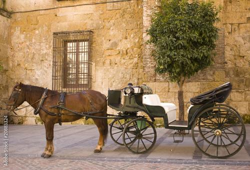 carroza caballo - 20883324