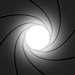 Gun barrel - vector illustration
