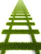 grassy railroad