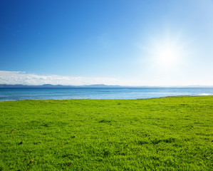 Caribbean sea and field of green grass