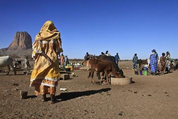 Mali, de Gao à Ménaka