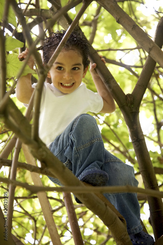 cute boy in a tree