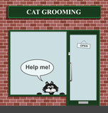 Reluctant feline not happy to be at the cat grooming poster