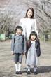 桜並木の下に立つ小学生男女と母親
