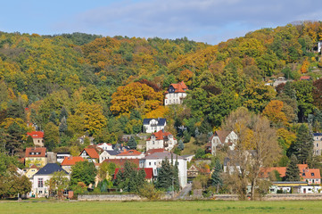 Dresden's countryside  in autumn colors
