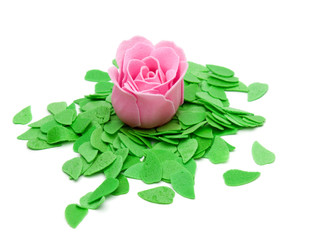 rose and green leaves