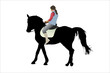 horsewoman and the horse