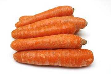 belles carottes