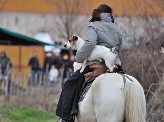 Cavalière et chien