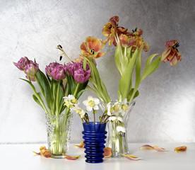 Blumen # 6126