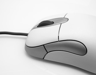 Computer Mouse - Close-up